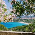 Słońce, morze i jedzenie – czyli ślub i miesiąc miodowy na Sardynii